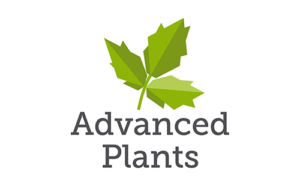 Advanced Plants